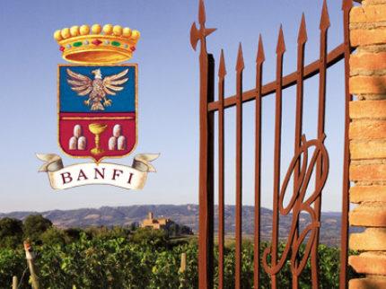 Castello Banfi ett av Toscanas mest dynamiska vinhus!