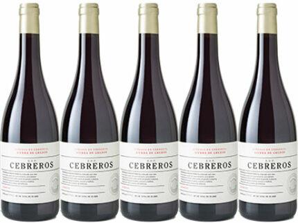 Vino de Cebreros – ny spanjor på tillfälligt besök.